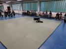 Kup-Prüfung 14.07.2017_6